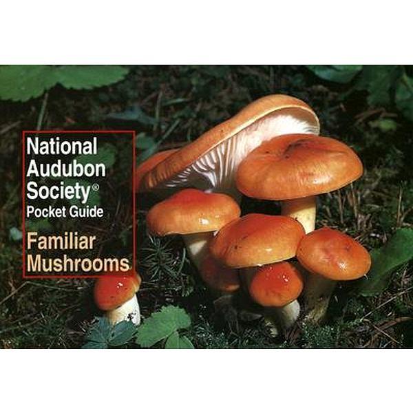 Familiar Mushrooms