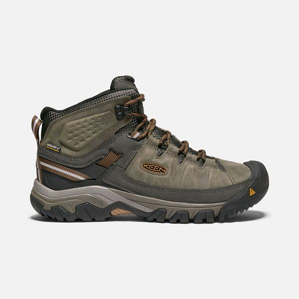 Targhee III Mid Waterproof Black Olive - Men's