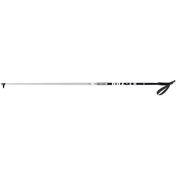 XT 700 Ski Pole