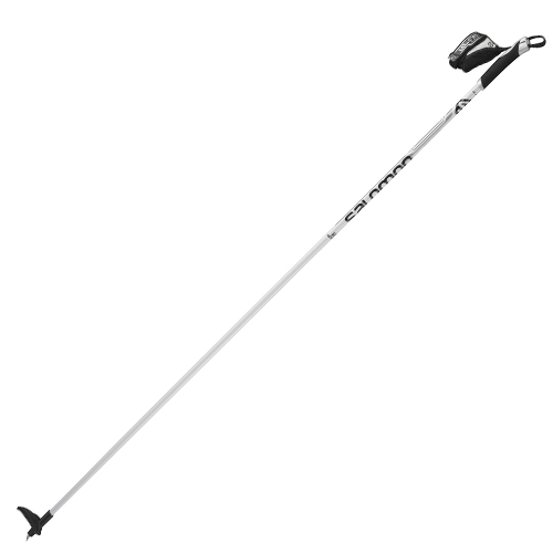 Active Ski Pole